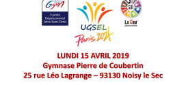 SONDAGE DE PARTICIPATION POUR LE DEFI'GYM 2019 (15/04/2019)